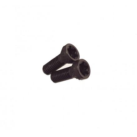 Torx Screw 2 pz. for alluminium grips - Tanfoglio