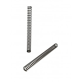 P10 Firing Pin Spring Light (Kit 2 pz) - CZ