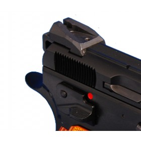 Rear Sight Defender grooved 10mm CZ